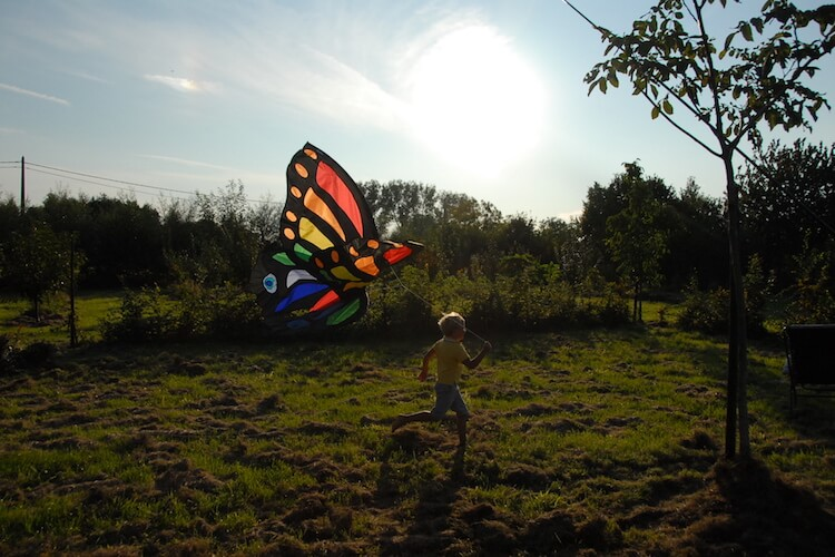 eric-boydens-boomgaardgesprekken-voor-wie-vlinder